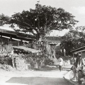 沖縄風景今昔 vol.8 壺屋やちむん通り