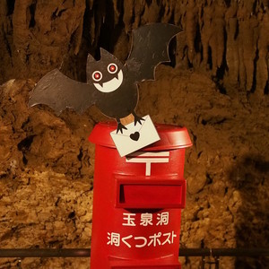 日本初!?玉泉洞に地下40mのポストが爆誕!