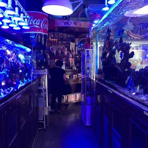 青いいなむどぅちが出てくる喫茶店