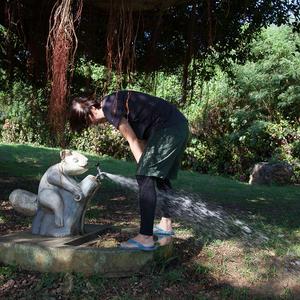 宮古島の盛加越公園の手洗い場がヤバい