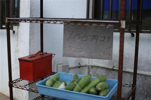 100円コナ