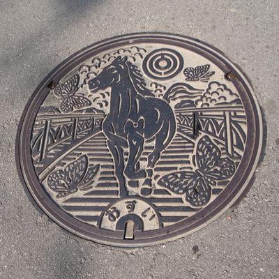 石垣島おすい(宮良)