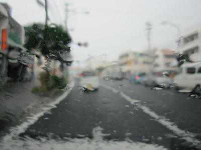 20100901_01.jpg