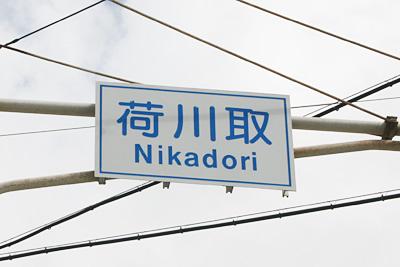 nikadori02.jpg