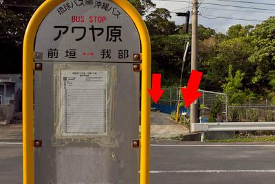 bus-stop30.jpg