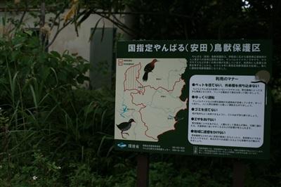 yanbaru_image_9.jpg