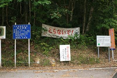 yanbaru_image_16.jpg