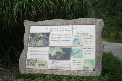 kani_image_0.jpg