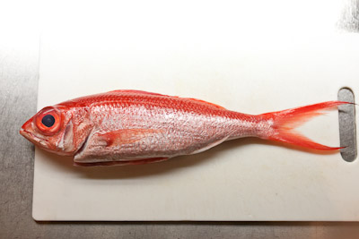 grilledfish_05.jpg