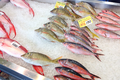 grilledfish_27.jpg