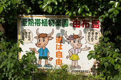 yubujima_59.jpg