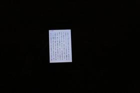 kani_image_39.jpg