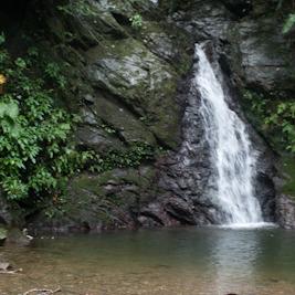 この夏行きたいやんばるあたりの滝めぐり
