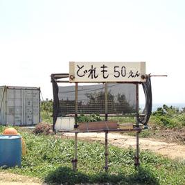 沖縄の無人販売所には何が売っているのか