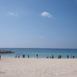 沖縄では本当に年中泳いでいる人がいるのか