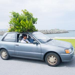 車の屋根から木が生える凄すぎるエコカー