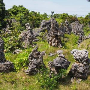 宮古島に凄いパワースポットがあると聞いて行ってきました