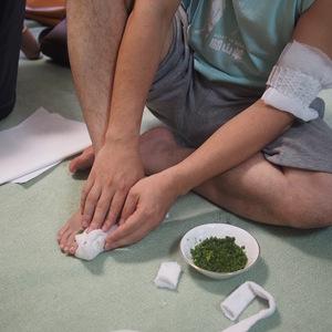 沖縄の薬用植物は骨折に効果があるのか