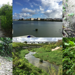 国場川の源流を探す