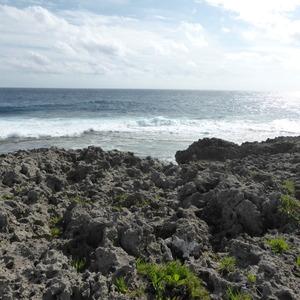 本島最南端で二つの海を股にかけたい