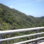国頭村で林業の歴史を聞いてきた