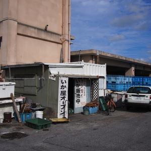 冬季限定で開店する港町のいか屋