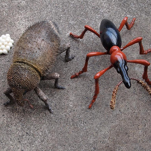 リアルすぎる病害虫模型