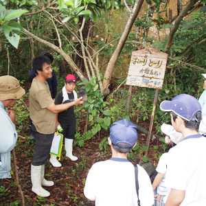 船浮小中学校の平和学習で西表島の歴史を垣間見た
