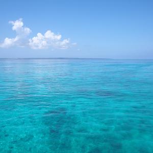 宮古島の海は本当にバスクリン色なのか